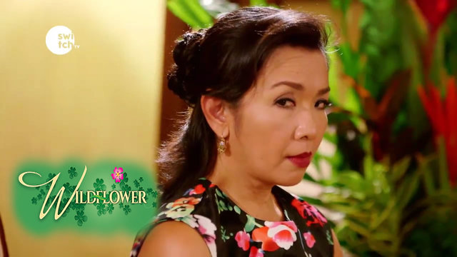 Wild Flower: EP46 - Aunt Claire not happy with Emilia